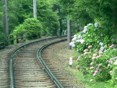 急勾配の箱根登山鉄道。80‰の標識が見える。あじさいの時期にいくときれいですよ。