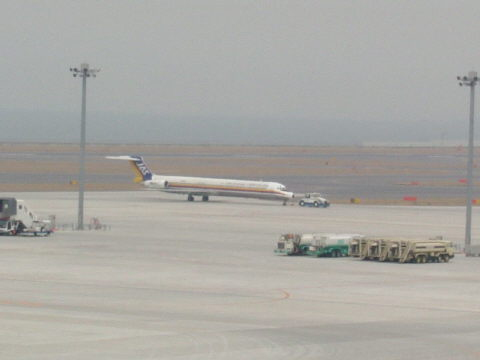 奥に止まっていた旧JAS塗装の機体。これが私の乗る札幌(千歳)行きとなりました。