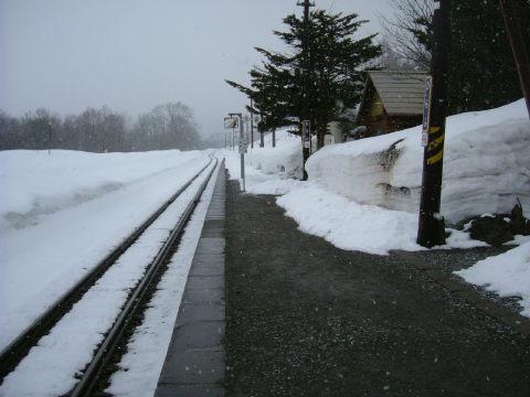 奥に見えるのがロッジです。この日はロッジで泊めて頂けました。まさに駅の中。